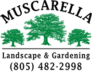 Mike Muscarella Landscaping